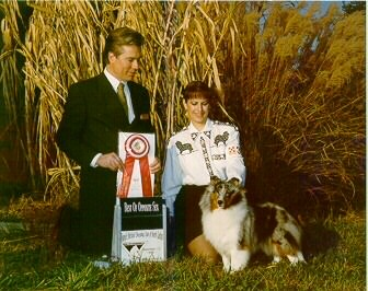 Ch Echowyn Soft Colors - BOB TSSCof NC Nov13,1999. D. Wheatcroft judging